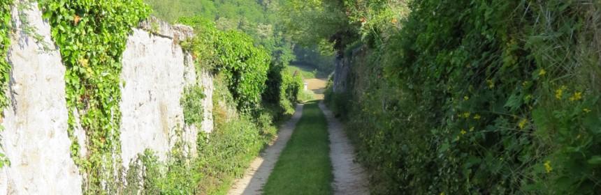promenade à Bucy-le-long
