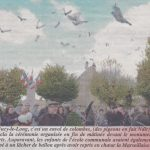a-19-nov-pigeons